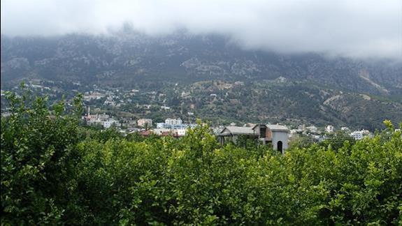 widok z tarasu na góry