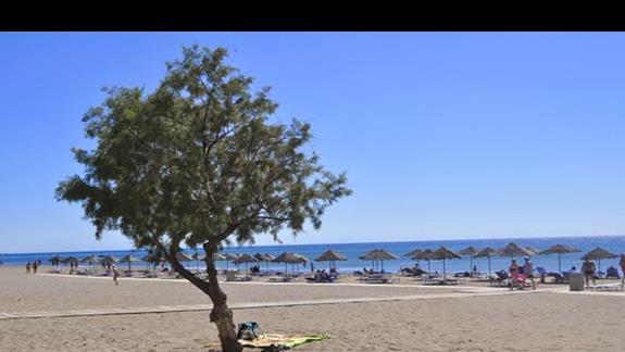 Plaża przy hotelu Blue Sea