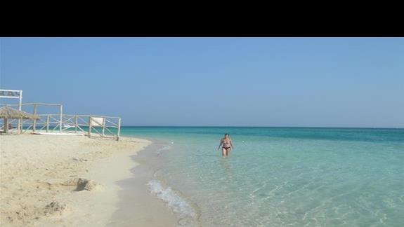 wycieczka na Paradise-warto po drodze 2 snurowania na rafie(zdjec brak-aparat dostal wody).