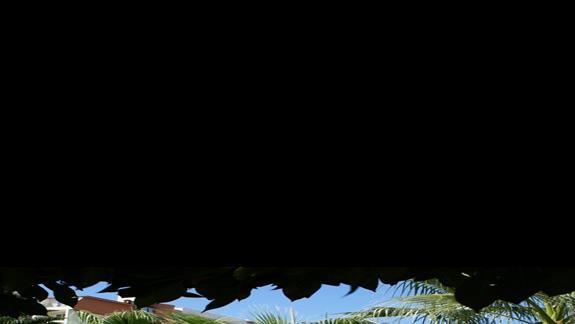 hamak - leżak w ogrodzie