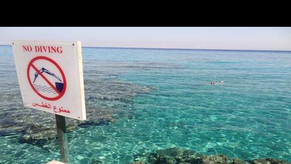 Widok z mola hotelowego. Nawet najwięksi laicy płetwonurkowania mogą podziwiać tu wspaniałą rafę i rybki!