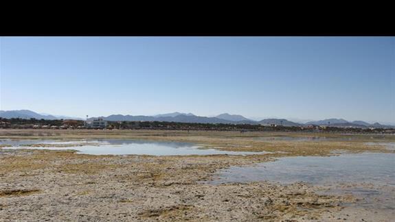 """plaza widziana """"z glebin morskich"""" podczas odplywu"""