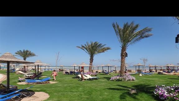 Teren relaksacyjny i fragment plaży w hotelu Jaz Aquamarine