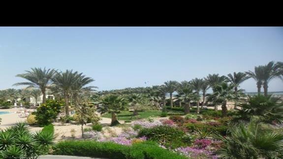 Ogród przy plaży hotelu Jaz Mirabel Beach