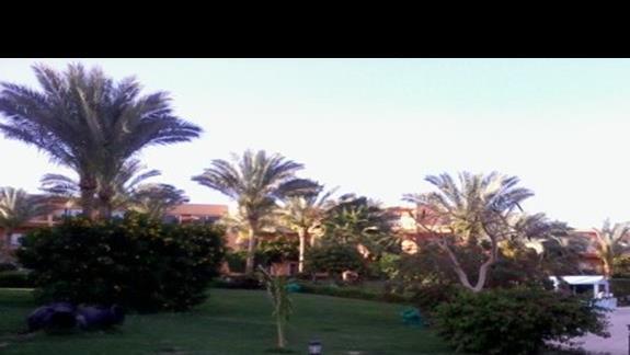 Teren hotelu Amwaj