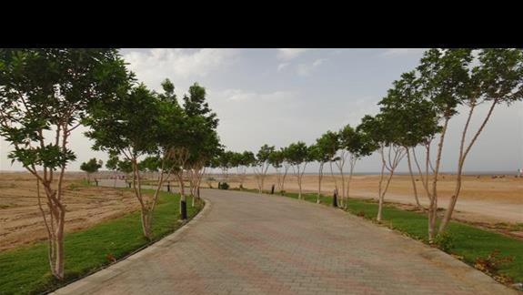 Dojscie na plaze hotelu Oriental Bay