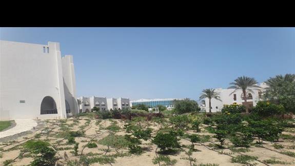 Rosnacy ogród w hotelu Hilton Marsa Alam Nubian Resort