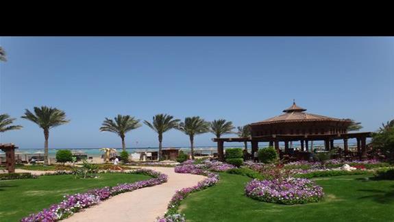 Bar i droga na plaze w hotelu Sentido Oriental Dream Resort