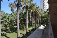 Hotel Riadh Club - widok z okna