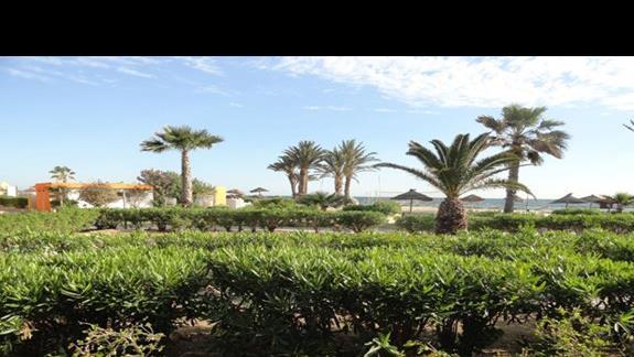 Caribbean World Monastir - ogród
