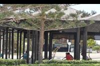 Hotel Amir Palace - Amir Palace - zajęcia jogi