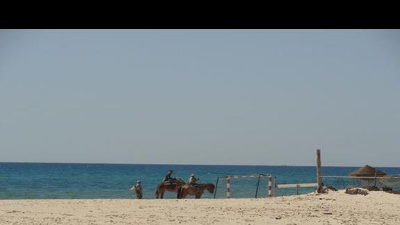 Caribbean World Beach - plaża