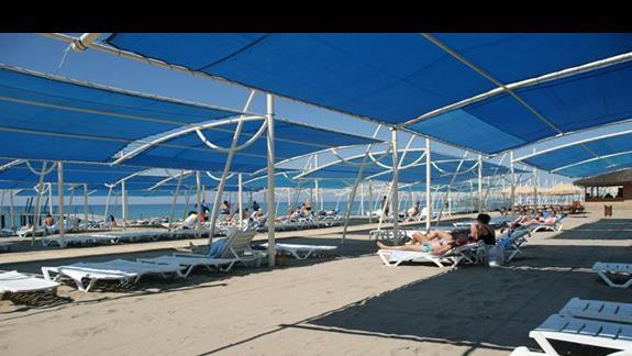 Sea World Resort. Plaza