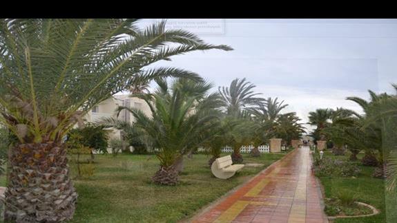 Omar Khayam Club - ogród