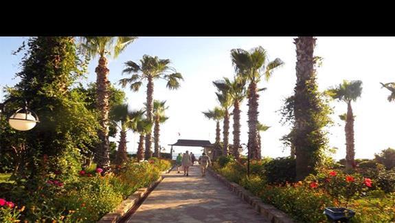 Przejscie na plaze w hotelu Holiday Park Resort