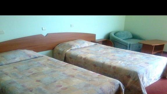 Pokój standardowy w hotelu Edelweiss