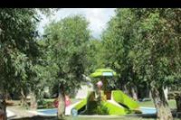 Hotel Roxy Luxury Spa - Aurum Spa & Beach Resort minizjezdzalnie