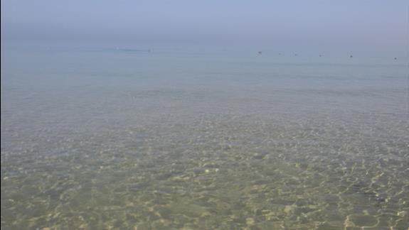 morze super