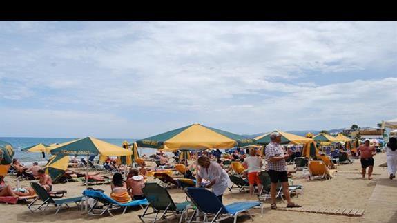 Plaża przy hotelu Cactus Beach