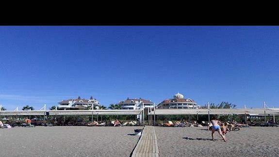 Sherwood Dreams  - plaża