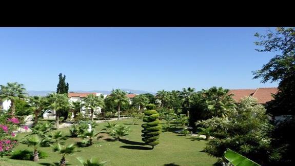 ogród przy bungalowach