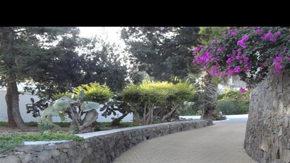 Kakkos Bay - wewnętrzna ścieżka