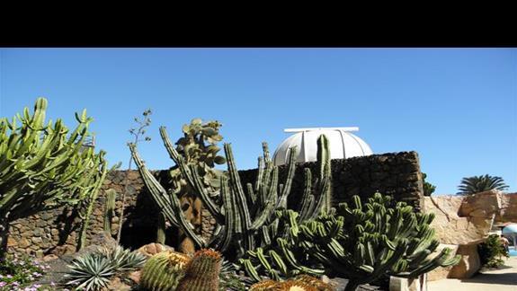 kopuła obserwatorium astronomicznego zlokalizowanego na terenie hotelu Melia Gorriones