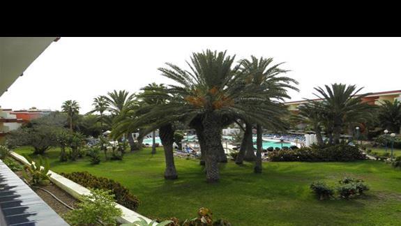 Widok na basen z pokoju typu standard w hotelu Fuerteventura Playa