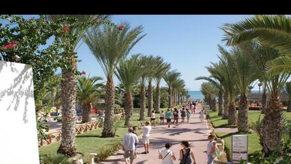 Droga na plaze Hotelu Riu Palm Azur