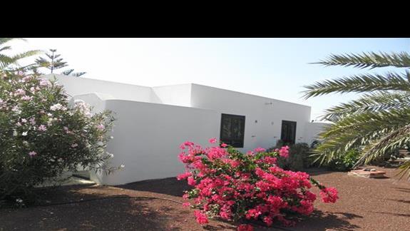 Roslinnosc ogrodowa wokól bungalowów w hotelu Rio Playa Blanca