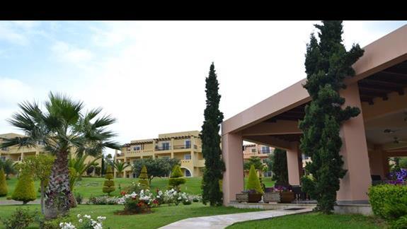 Ogród w hotelu Horizon Beach