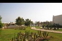 Hotel Hilton Marsa Alam Nubian Resort - wypielęgnowana roślinnośc w hotelu