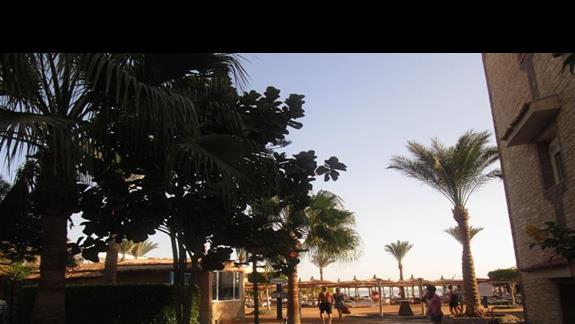 wyjście na plażę