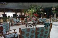Hotel Ali Baba Palace - lobby