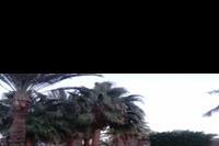 Hotel Aladdin Beach - kto chętny na taki relaks? :)