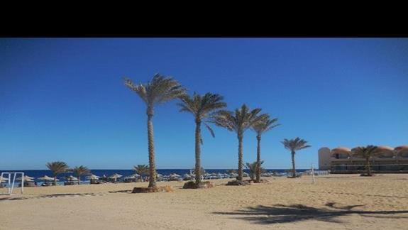 Plaża w hotelu Three Corners Sea Beach