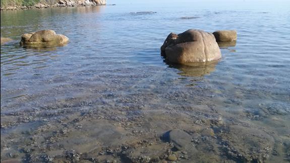 Dno morza