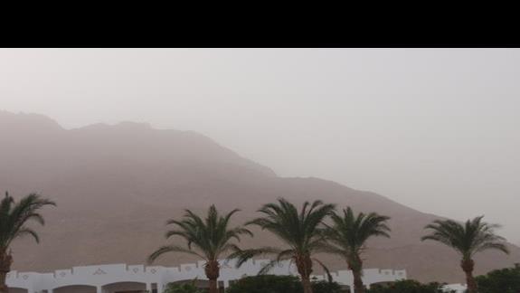 Widok w mgle pyłowej