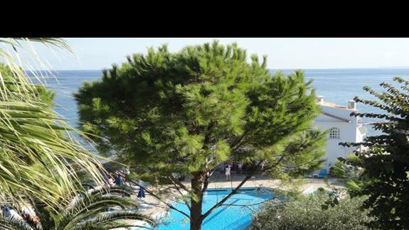 Alexandra Beach - ogród
