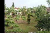 Hotel Lyra Resort - Ogród Hotelu Lyra Resort