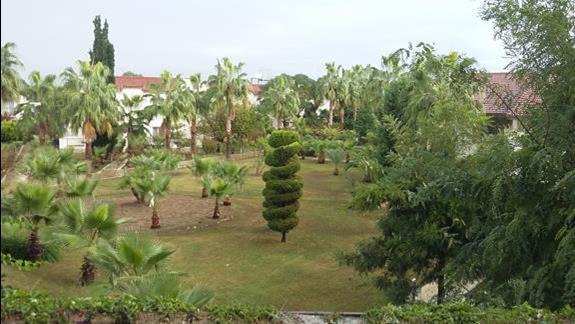 Ogród Hotelu Lyra Resort