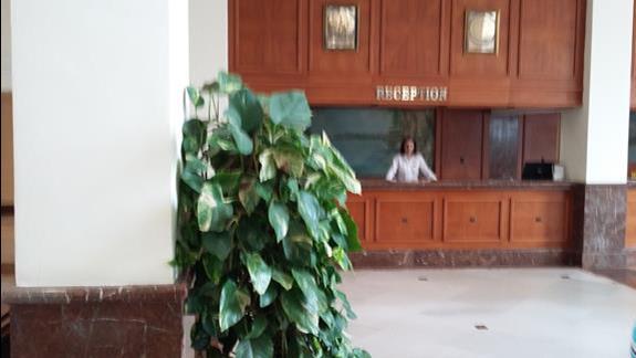 Recepcja Hotelu Otium Seven Seas