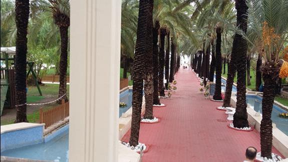 Otoczenie Hotelu Otium Seven Seas