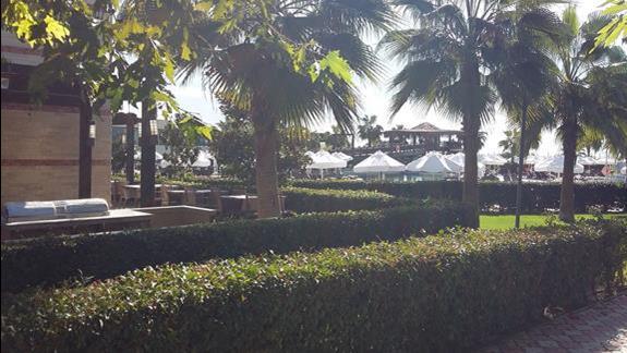 Ogród Hotelu Sherwood Dreams Resort