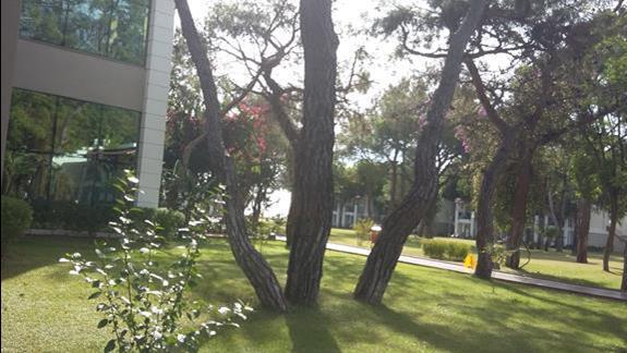 Ogród Hotelu Sherwood Club Kemer