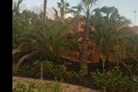 Hotel Oasis Papagayo Resort - ogród