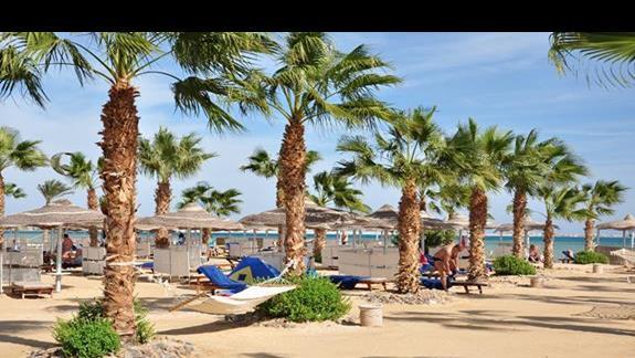 plaża w hotelu Amwaj Blue Beach Resort&Spa