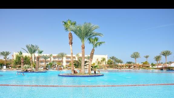 basen w hotelu Desert Rose