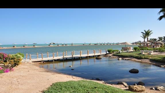 laguna w hotelu Movenpick Resort Spa El Gouna