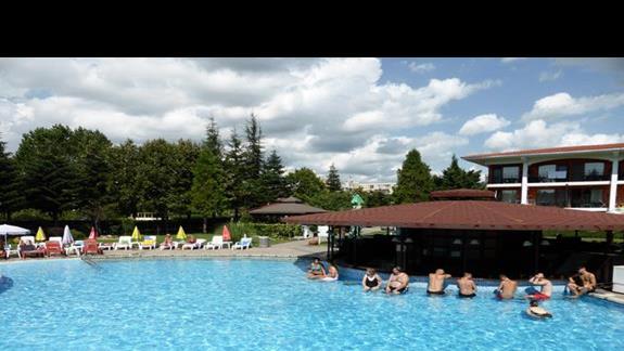 Basen w hotelu Hrizantema